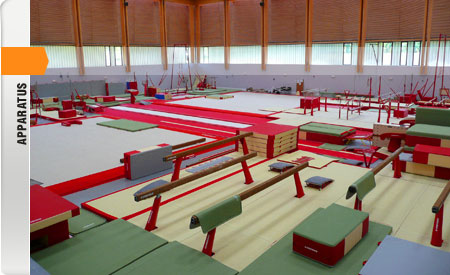Manufacturer Of Gymnastics And Acrobatic Sports Equipment