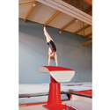 PIT-EDGE PEDESTAL BASE VAULTING TABLE - WITHOUT FLOOR ANCHORS